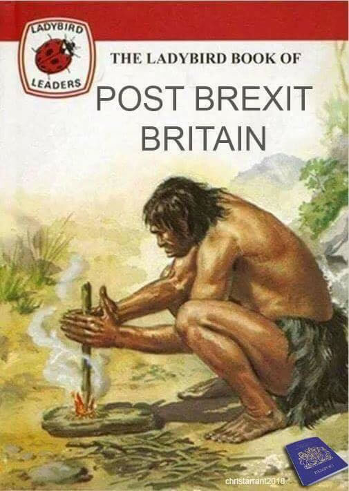 ladybird-book-of-post-brexit-britain